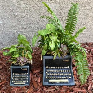 Typewriter Planter Gift Idea